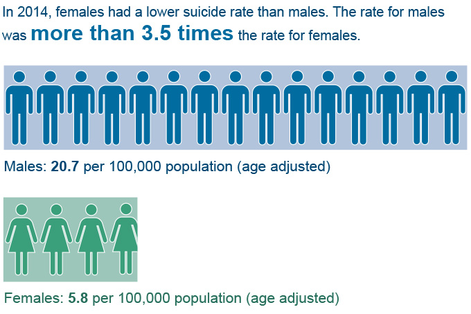 Suicide Rate by Sex Graphic