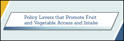 Policy Levers Thumbnail Image