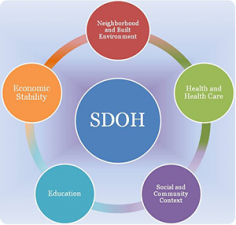 what are the 12 social determinants of health